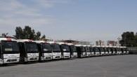 Çalışmayan otobüsler kuşların yuvası oldu