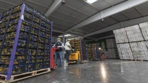 100 ton limon Mersin'den yola çıktı