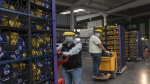 Ankara Büyükşehir Belediyesi de Mersin'den limon alacak