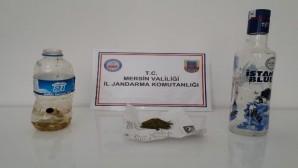 Uyuşturucu madde kullanan 4 kişi yakalandı