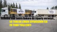 Mersin'in limonları bu kez de başkent için yola çıktı