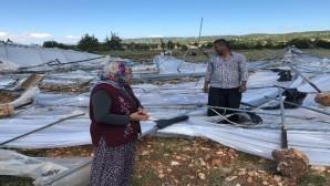 Şiddetli rüzgar Erdemli'de seralara zarar verdi