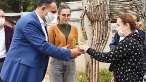 Başkan Yılmaz'dan annelere 100 bin kadife çiçeği