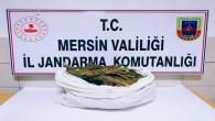 Mersin'de 12 kilo esrar ele geçirildi