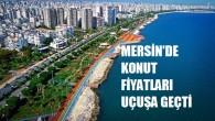 Mersin'de fırsatçılara gün doğdu