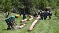 Orman köylülerine 34 milyon lira ödeme yapılacak