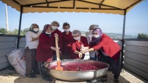 Mersin'in çileği ve vişnesi, kadınların elinde ekonomiye dönüşüyor