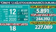 Türkiye'de son 24 saatte 1.212 kişiye Kovid-19 tanısı konuldu, 18 kişi hayatını kaybetti