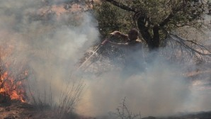 Silifke'deki yangın büyümeden söndürüldü