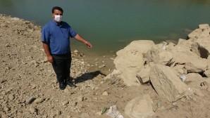 Ölü balıklar gölet kıyısına vurdu