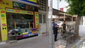 Akdeniz'de pet shoplar denetlendi