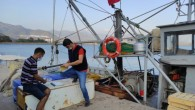 Mersin'de boy limitlerine uymayan balıklara el konuldu