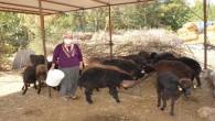 Haydi Gel Köyümüze Destek Verelim Projesi' kadınların ve gençlerin umudu oldu