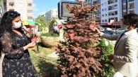 Toroslar Belediyesinden 'şiddete hayır' etkinliği