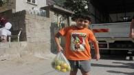 Yenişehir'de 20 ton narenciye dağıtıldı