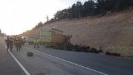 Elma yüklü kamyon devrildi: 1 ölü