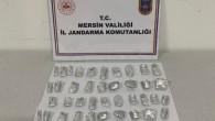 Mersin'de bonzai satıcıları suçüstü yakalandı