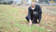 Tarsus'ta 'ata tohumu' projesi toprakta hayat buldu