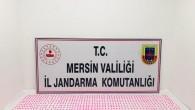 Mersin'de uyuşturucu operasyonuna 3 tutuklama