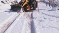 Toroslar'da kardan kapanan yayla yolları ulaşıma açılıyor
