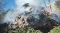 Tarsus'ta 30 ton saman kül oldu