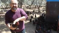 Hobi olarak başladı, şimdi günde 600 yumurta üretiyor