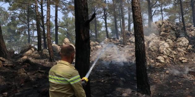 Orman yangınında soğutma çalışmaları devam ediyor