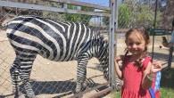 Başkan Gültak, çocukların hayvanat bahçesi isteğini geri çevirmedi