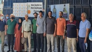 22 bin litre Mut zeytinyağı Fransa'ya ihraç edildi