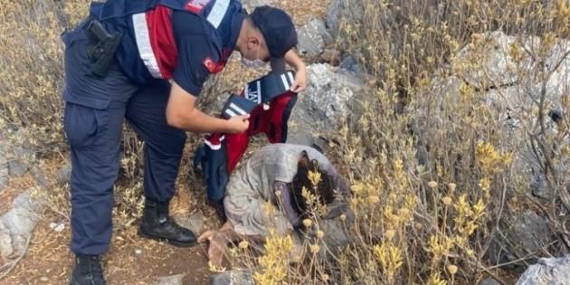 İki gündür kayıp olarak aranan kadın ormanlık alanda bulundu