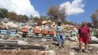 Mersin'de orman yangınlarında zarar gören vatandaşlara hibe desteği
